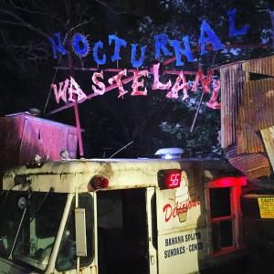 Nocturnal Wasteland