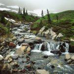 Myrtle Falls Upstream