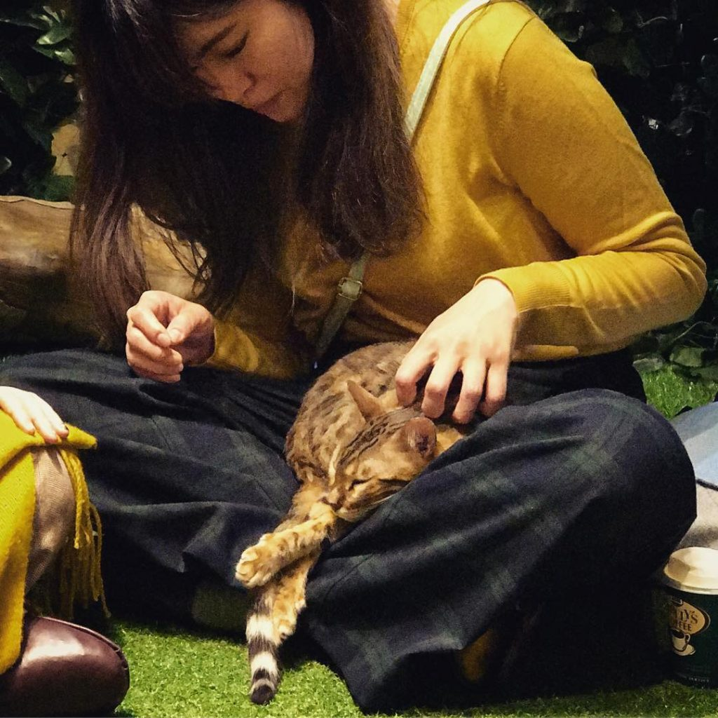 Bengal Forest - Student with Lap Cat