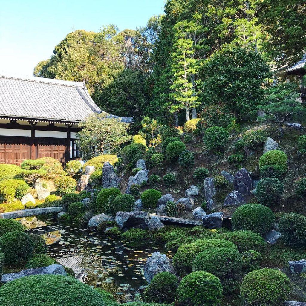 Tofuku-ji - Pond