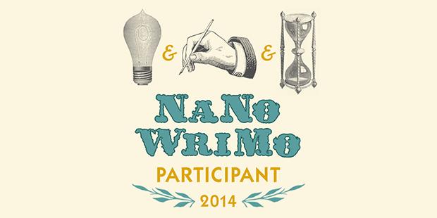 NaNoWriMo - Adapting the Metrics