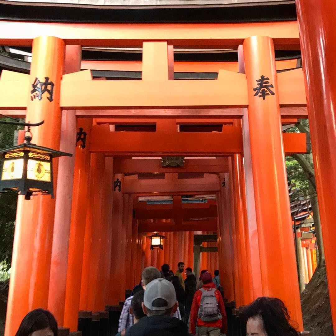 Fushimi Inari - Torii Crowds