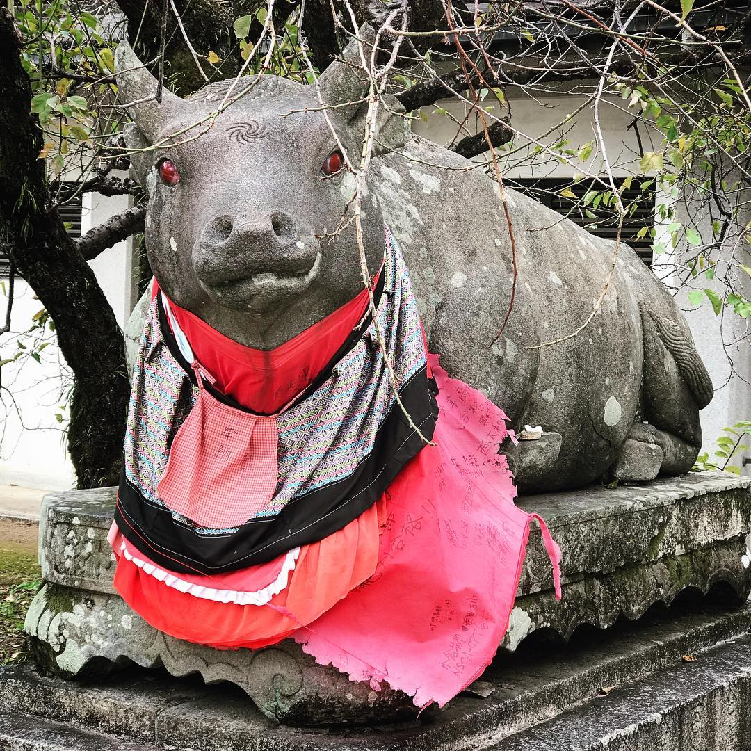 Kitano Tenmangu Shrine - Pig Statue with Smock